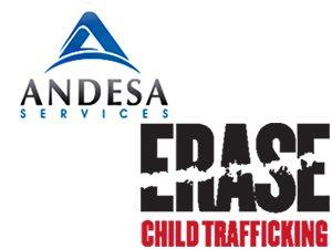 Andesa Fellowship